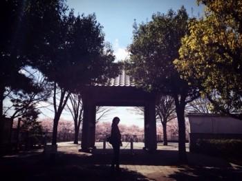 桜makeの映える日。imege