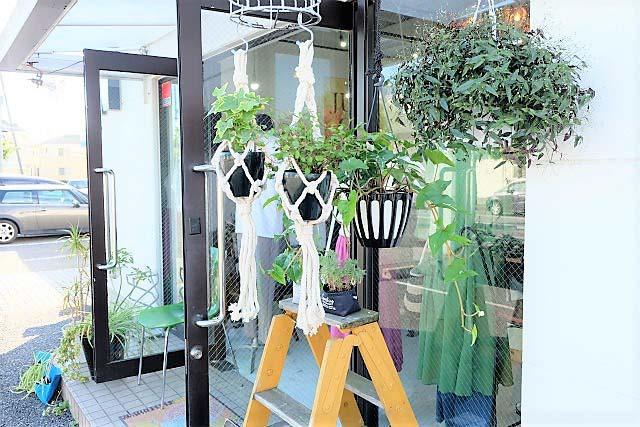 緑の店|つくばセレクトショップ