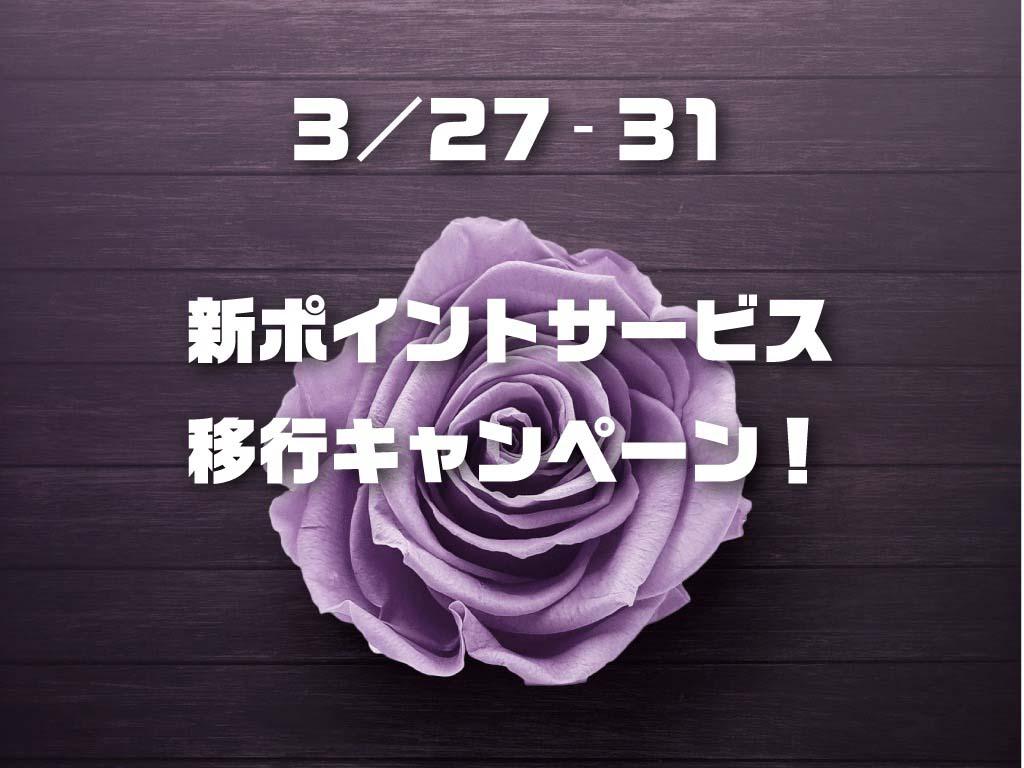 27日よりキャンペーンスタート!!!
